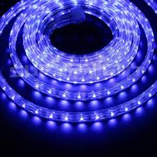 110v pvc tubing waterproof flexible led strip lights super bright