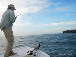 fishing guides port aransas hooked up to a cow nose ray kenjo fly fishing charters