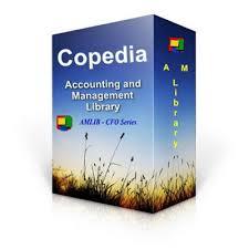 internal control templates copedia