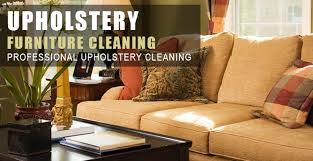 best professional carpet cleaning chaign urbana il 217 722 3663