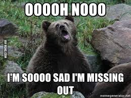 Sad Bear Meme - ooooh nooo i m soooo sad i m missing out obviously sarcastic bear