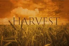 harvest sermons impact christian church