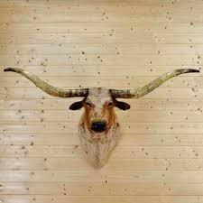 Decorative Longhorns Wall Ideas Longhorn Wall Decor Plastic Longhorn Skull Wall