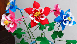 columbine flowers how to make paper flowers columbine aquilegia flower 81