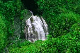 Iao Valley State Park Map by Half Day Central Maui Tour To Haleakala And Iao Valley Tours4fun