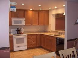 Kitchen Can Lights Kitchen Inspiring Kitchen Design Ideas With Brown Wood