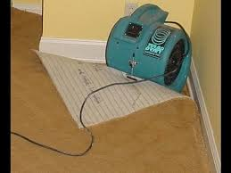 Carpet Pad For Basement by How To Dry A Flooded Wet Carpet Water Damage Flooded Carpet