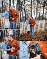 christmas photos with dog couple and their dog christmas lights