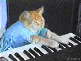 Cat Playing Piano Meme - keyboard cat gifs get the best gif on giphy