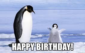 Penguin Birthday Meme - happy birthday happy baby penguin meme generator