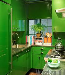 Green Kitchen Cabinets Fancy Design Green Kitchen Colors Kitchens Ideas For Pictures