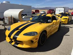 Dodge Viper Yellow - what snake is that a helpful guide to viper id rod network