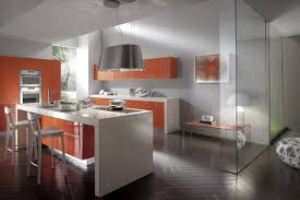 Euro Design Kitchen by European Kitchen Cabinets And Bath Texas Distribuitors Euro Design