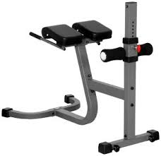 Chair Gym Review Top 5 Hyperextension Bench Reviews Best Hyperextension Bench