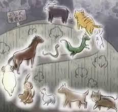 film zodiac anime eastern zodiac tv tropes