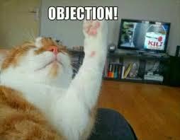 Objection Meme - objection cat memes and comics