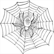 Halloween Spider Web Coloring Pages Halloween Fun Party Spider Web Coloring Page