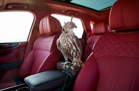 inside bentley bentley bentayga falconry by mulliner is for the birds motor