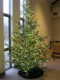 decorating the christmas tree u2013 good shepherd lutheran church