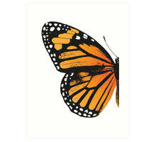 monarch butterfly left wing prints by eclecticatheart