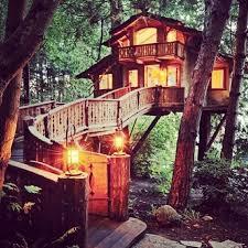 cool tree house best 25 cool tree houses ideas on beautiful tree