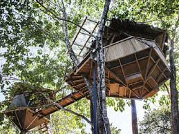 6 lofty treehouse vacation homes you can rent