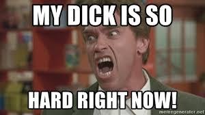 Hard Dick Meme - my dick is so hard right now arnold meme generator