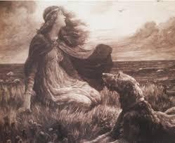 afghan hound ireland irish dogs and irish writers