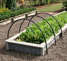 Best Type Of Mulch For Vegetable Garden - gardening in raised beds gardening solutions university of