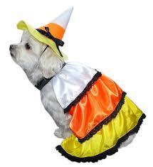 amazon com anit accessories candy corn dog costume 16 inch