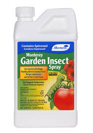 Insecticide For Vegetable Garden by Best Insecticides For Foggers Insect Cop