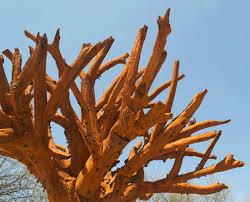iron tree in meijer garden re sculpt international sculpture