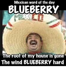 Wind Meme - mexican word of the day blueberry the roof of my house is gone the