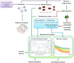 metabolites free full text computational strategies for a