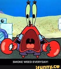 Mr Krabs Meme - image mr krabs smoke weed everyday meme jpeg random ness 2 wiki