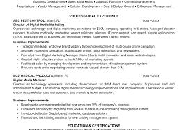profile example for resume resume beautiful digital marketing resume resume infographic