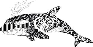 coloring page killer whale coloring pages captivating killer whale coloring pages killer orca