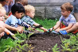 9 outstanding outdoor learning opportunities in pittsburgh this