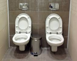 the mysterious case of the double toilet bbc news