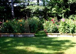 backyard flower garden home design ideas