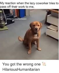 Lazy Worker Meme - 25 best memes about lazy coworkers lazy coworkers memes