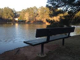 Landscaping Peachtree City Ga by 35 Best Peachtree City Ga Images On Pinterest Christmas Eve
