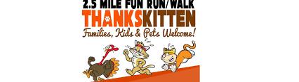 thankskitten thanksgiving run walk shorebread