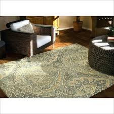 Area Rugs Clearance Free Shipping Area Rug Clearance S 8 10 Outdoor Rugs Discount Free Shipping