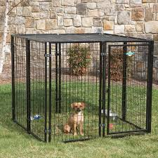 temporary dog fencing ideas keep dog with temporary dog fencing