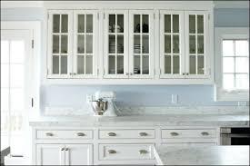 Replace Kitchen Cabinet Doors With Glass Ikea Glass Kitchen Cabinets Lovable Glass Kitchen Cabinet Doors