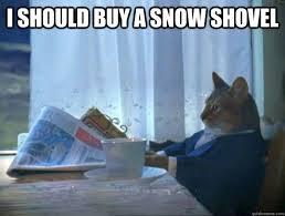 Shovel Meme - i should buy a snow shovel morning realization newspaper cat meme