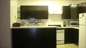 kitchen room ikea shelves and cabinets ikea kitchen cabinet
