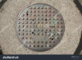 bichon frise golf head cover sewer man hole cover city street stock photo 61608052 shutterstock