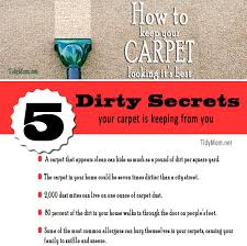 How Much For Rug Doctor Rental Tips On Carpet Cleaning Rug Doctor